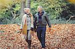 Senior couple walking in autumn leaves in park