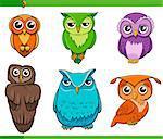 Cartoon Illustration of Owl Birds Animal Characters Set