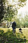 Rear view of sheep farmer, shepherd walking across a meadow with his sheepdog.