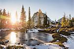 Sunlight through trees by lake, cascade mountain range, Diablo, Washington, USA