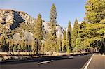 Highway through Yosemite National Park, California, USA