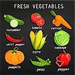 Set of fresh vegetables. Chalkboard background. Organic farm illustration. Healthy lifestyle vector illustration design elements.