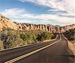 Empty road, Zion National Park, Springdale, Utah, USA