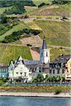 Assmannshausen along the Rhine between Rudesheim and Koblenz, Germany