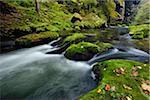 River Kamnitz (Kamenice) in the Edmundsklamm (Edmund Gorge) with moss covered sandstone rocks near Hrensko, Bohemian Switzerland, Czech Republic
