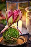 Creative flower decorations