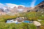 Alpine lake from National park Stelvio Europe, Italy, Trentino region, Venezia valley, Sun valley, Pejo, National park Stelvio