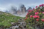 Europe, Italy, Dolomites, Belluno and Bolzano. Tre Cime di Lavaredo north face near the sorce of river Rienza