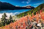 Autumn mist covers the valley floor hiding the lakes of Engadine. Sils, Canton of Graubunden, Switzerland Europe