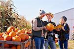 Farmers working at pumpkin farm