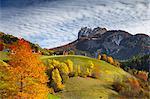 Autumn hills of San Pietro, Odle of Eores dolomites, Funes valley, South Tyrol region, Trentino Alto Adige, Bolzano province, Italy, Europe