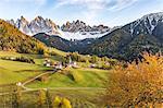 Autumnal cherry tree with Santa Maddalena village and Odle Dolomites peaks on the background. Santa Maddalena, Funes, Bolzano, Trentino Alto Adige - Sudtirol, Italy, Europe.