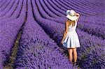 Woman in white in a lavender field. Plateau de Valensole, Alpes-de-Haute-Provence, Provence-Alpes-Côte d'Azur, France, Europe.