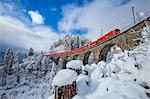 Bernina Express passes through the snowy woods Filisur Canton of Grisons Switzerland Europe