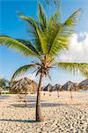 Bavaro Beach, Bavaro, Higuey, Punta Cana, Dominican Republic.