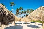 Bavaro Beach, Bavaro, Higuey, Punta Cana, Dominican Republic. Thatch beach umbrellas.
