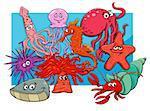 Cartoon Illustrations of Sea Life Animal Characters Group
