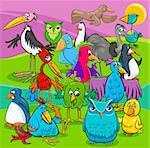 Cartoon Illustration of Birds Animal Characters Group