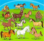 Cartoon Illustration of Horses Farm Animal Characters Herd