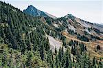 Autumn in the North Cascades, near Harts Pass, Pacific Crest Trail, Pasayten Wilderness, Washington.