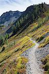 Hiking trail in the North Cascades, Pacific Crest Trail through pristine alpine wilderness, autumn, near Granite Pass, Pasayten Wilderness, Okanogan National Forest, Washington.