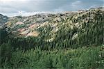 Fall in the North Cascades, near Cutthroat Pass, Washington.