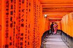 Fushimi Inari-taisha Temple, Shinto sanctuary, torii lined alleys, Kyoto, Kansai region, Honshu island, Japan, Asia