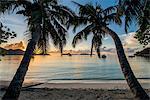 Anse Government beach, Praslin, Republic of Seychelles, Indian Ocean, Africa