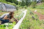 Woman tending to vegetables in vegetable garden