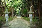 Path at Shinto Sakurai Shrine, Fukuoka, Japan.