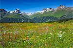 Alp Flix, Swiss Alps, Switzerland, Europe
