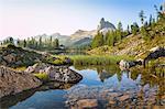 natural environment near the Federa lake in summer, Cortina d Ampezzo, Belluno, Dolomites, Veneto, Italy
