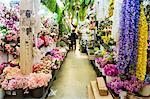 Interior of Artificial Flower Shop. Bangkok, Thailand