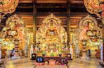 Gia Sinh, Buddhas inside a pagoda at Bai Dinh Mahayana Buddhist Temple near Tam Coc, Ninh Binh, Vietnam, Indochina, Southeast Asia, Asia