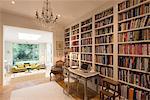 Books on bookshelves in luxury home showcase interior library