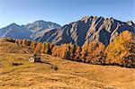 Alpine landscape in autumn at Alpe Granda, Valtellina, province of Sondrio, Lombardy, Italy