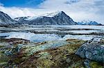 Moss covered rocks among remote fjord and mountains, Langraget, Lofoten, Norway