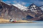 Remote houses along fjord below craggy mountains, Flakstadpollen, Lofoten, Norway