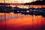 Boats in harbor at sunset, Bainbridge, Washington, United States