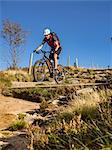 Mountain biker cycling on single trail on Ringelbuhlkopf, Alsace, France