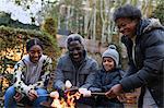 Grandparents and grandchildren roasting marshmallows over campfire