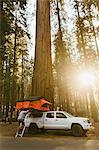 Man preparing tent on truck, Sequoia National Park, California, USA