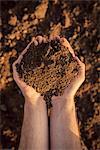 Farmer holding pile of soil.