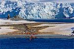 Expedition tourists leave Half Moon Island, Livingston Island blue glaciers and evening sun, South Shetland Islands, Antarctica, Polar Regions