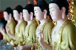 Row of Buddha statues, Hoi Tuong Te Nguoi Hoa Buddhist Chinese temple, Phu Quoc, Vietnam, Indochina, Southeast Asia, Asia