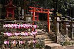 Kasuga Wakamiya Shrine in Nara Park, Nara, Honshu, Japan, Asia