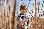 Boy amongst reeds, portrait