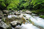Ehime Prefecture, Japan