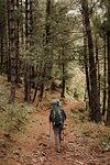 Hiker in forest, Annapurna Circuit, the Himalayas, Tatopani, Nepal