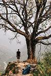 Hiker beside tree on peak, Annapurna Circuit, the Himalayas, Manang, Nepal